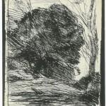 """""""Arbres dans la montagne"""", Cliché-verre de Corot"""