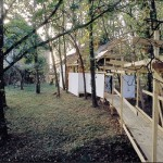 Transfert,  à Saché, 1993.
